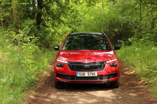 Škoda Kamiq Monte Carlo (14)