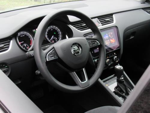 Škoda Octavia Liftback 2019 2,0 tdi 135 kw 4x4 (52)