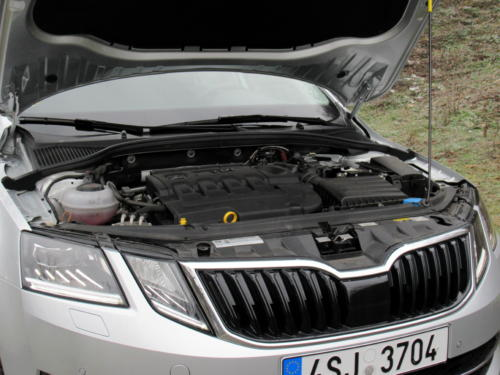 Škoda Octavia Liftback 2019 2,0 tdi 135 kw 4x4 (55)