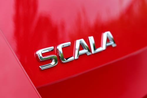 Nová Škoda Scala (83) (1)