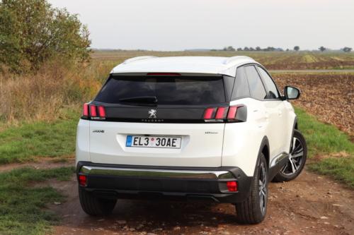 Peugeot 3008 hybrid4 (48)