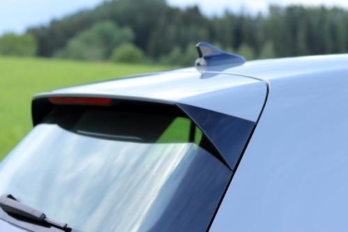 Volkswagen Golf VIII (105)