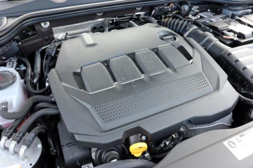 Volkswagen Golf VIII (17)
