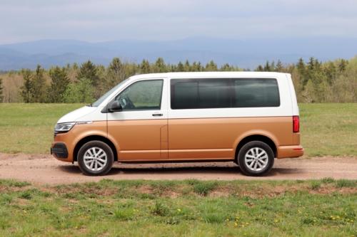 Volkswagen Multivan Bulli 2020 (39)